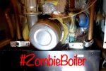 Zombie boiler hunter winner
