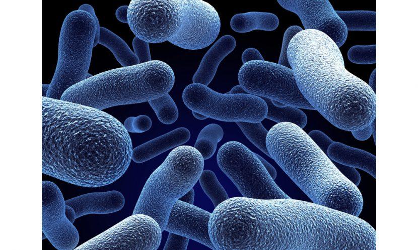 Legionella fatality raises wider safety concerns
