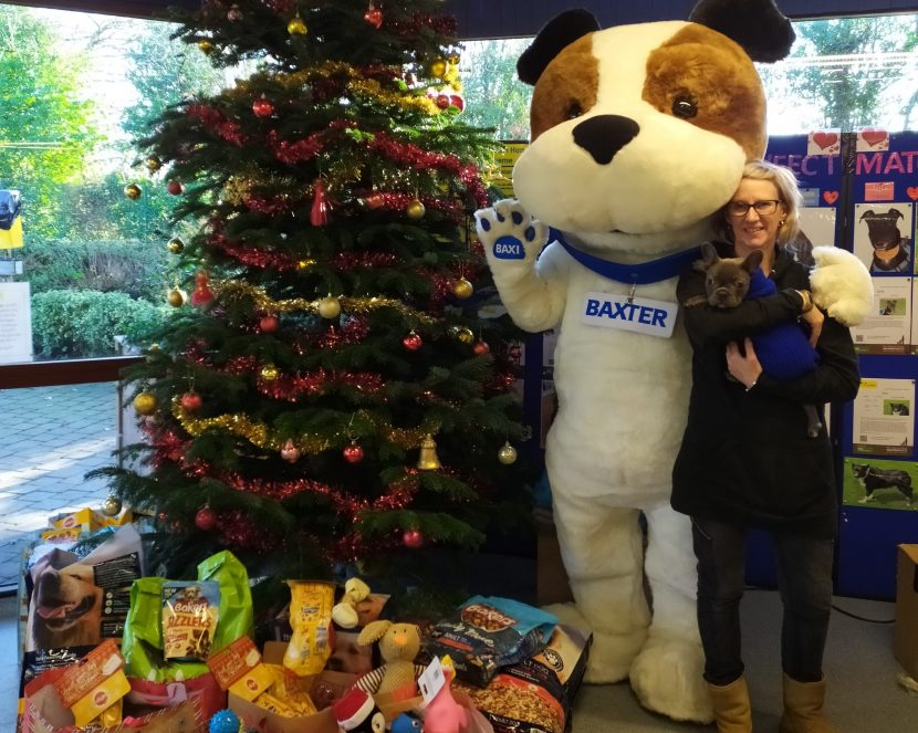 Christmas comes early for Kenilworth Dogs Trust
